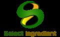 Logo transs2